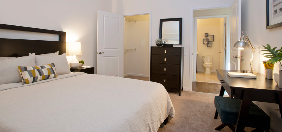 Summit Lane Luxury Apartments   Luxury One Bedroom And Two Bedroom ...